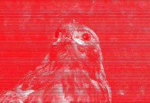 línies vermelles censura la panera lleida